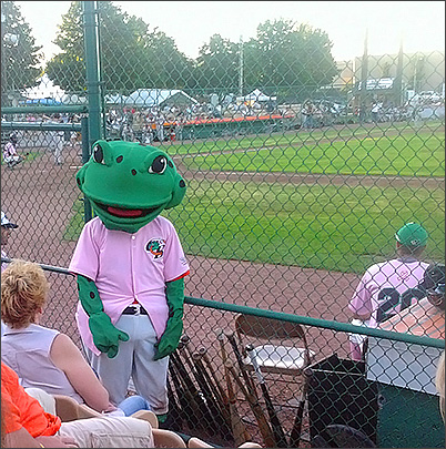 Bullfrogs Baseball in Green Bay, WI